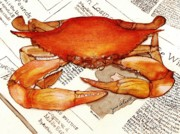 June Holwell - Boiled Crab
