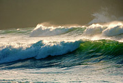 Back-light Prints - Boiler Bay Waves Rolling Print by Mike  Dawson
