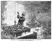 Seafood Worker Framed Prints - Boiling Lobsters, 1886 Framed Print by Granger