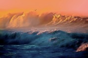 Beach Sunsets Originals - Boisterous Seas and Gull by Gus McCrea