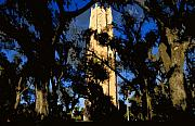 Old Florida Prints - Bok Tower Print by David Lee Thompson