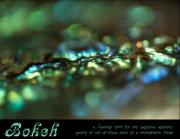 Abalone Seashell Prints - Bokeh Abalone Print by Joy Gerow
