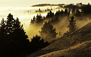 Mill Valley Prints - Bolinas Ridge Print by Lance Kuehne