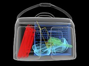 Explosives Prints - Bomb Inside Briefcase, Simulated X-ray Print by Christian Darkin