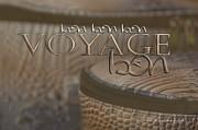 Bon Voyage Print by Vicki Ferrari Photography