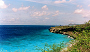 Tropical Photographs Photos - Bonaire Shore 2 by C Sitton