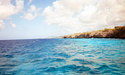 Tropical Photographs Photos - Bonaire Shore 4 by C Sitton