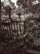 Savannah Infrared Photography Prints - Bonaventure Cemetary Print by Julie Hart