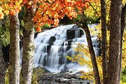 Upper Peninsula Framed Prints - Bond Falls In The Fall Framed Print by Photos by Michael Crowley