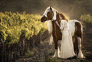 Horse Portrait Photographs Posters - Bonded Poster by Patty Hallman