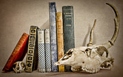 Librarian Prints - Bone Collector Library Print by Heather Applegate