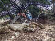 Bone Rattling Ride Print by Cindy Nunn