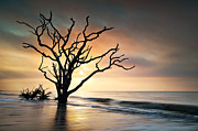 Shining Bright Prints - Boneyard Sunrise - Botany Bay Edisto Island SC Print by Dave Allen
