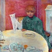 1912 Photos - Bonnard: Woman & Cat, 1912 by Granger