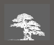 Stylized Mixed Media Posters - Bonsai I Poster by Ann Powell