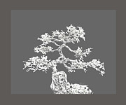 Bonsai Tree Posters - Bonsai II Poster by Ann Powell