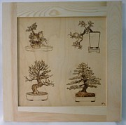 Asian Pyrography Framed Prints - Bonsai Pyrographic Art Original Panel with Frame by Pigatopia Framed Print by Shannon Ivins
