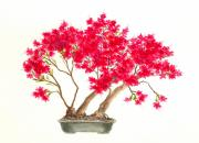 Bonsai Tree Posters - Bonsai Tree - Kurume Azalea Poster by Michael Vigliotti