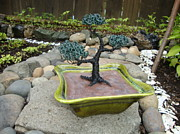 Plant Sculpture Metal Prints - Bonsai Tree Green Medium Metal Print by Scott Faucett