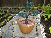 Wire Tree Sculptures - Bonsai Tree Medium Brown Square Planter by Scott Faucett