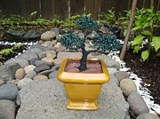 Wire Sculpture Sculptures - Bonsai Tree Medium Square Golden Vase by Scott Faucett