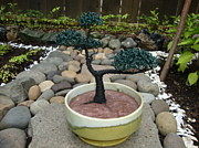 Cement Sculptures - Bonsai Tree Medium Two Tone Round by Scott Faucett