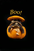 Surprise Framed Prints - Boo Halloween Turtle Framed Print by Rebecca Brittain
