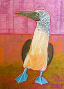 Bird Pastels Posters - Booby Bird Poster by Christine Belt