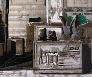 Manly Paintings - Boot Storage by Yadi