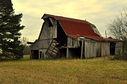 Bootheel Barn Print by Marty Koch