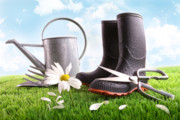 Can Photos - Boots with watering can and daisy in grass  by Sandra Cunningham