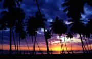 Boqueron Sunset Print by Thomas R Fletcher