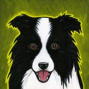White Dogs Prints - Border Collie Print by Leanne Wilkes
