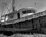 Shrimp Boat Prints - Born Free Print by Michael Thomas