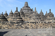 Mahayana Framed Prints - Borobudur Mahayana Buddhist Monument Framed Print by Mark Taylor