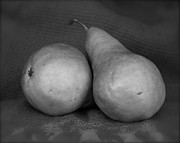 Bosc Framed Prints - Bosc Pears in Monochrome Framed Print by Constance Sanders