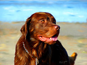 Dog Art Prints Prints - Bosco at The Beach Print by Michelle Wrighton