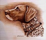 Sepia Pyrography Originals - Boscoe by Jo Schwartz