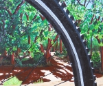 Bicycling Paintings - Bosque Singletrack by Susan M Woods