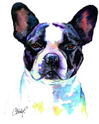 White Dog Prints - Boston Bulldog Portrait Print by Christy  Freeman