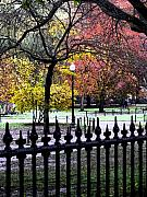 Boston Digital Art Metal Prints - Boston Common in November Metal Print by Mark Grayden