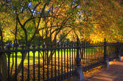 Fences Prints - Boston Foliage Print by Joann Vitali
