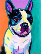 Terrier Art Painting Metal Prints - Boston Terrier - Jack Boston Metal Print by Alicia VanNoy Call