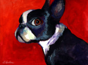 Pet Portraits Drawings Prints - Boston Terrier dog portrait 2 Print by Svetlana Novikova