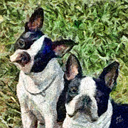 Boston Paintings - Boston Terrier Duo - Skipper and Dee Dee by Patty Dunlap and Laurence Canter