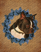Cute Dogs Digital Art - Boston Terrier Love by Smilin Eyes  Treasures