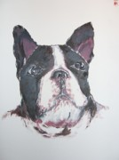 Bred Originals - Boston Terrier by Michael Toth
