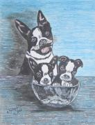 Kathy Marrs Chandler - Boston Terrier Mom and...