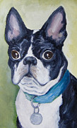 Boston Paintings - Boston Terrier by Nicole Okun