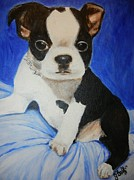 Boston Sculptures - Boston terrier pup by Julie Graff